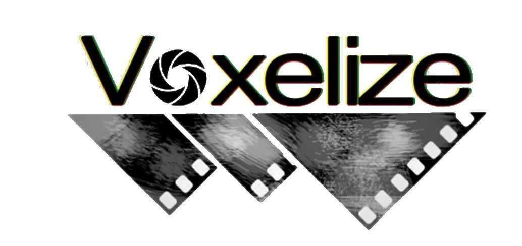 Voxelize