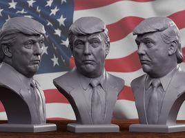 Donald Trump bust 2