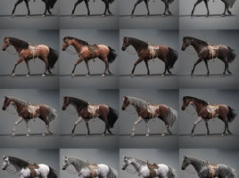 animated 3D Horses
