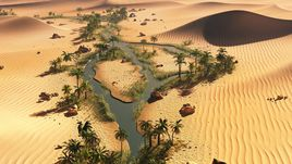 The long oasis