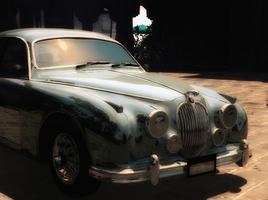 Jaguar Fantasy