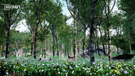 UnrealForest 001