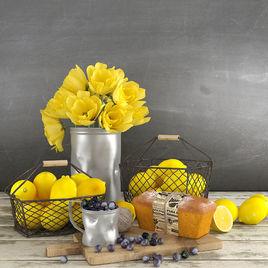 Decorative set for interior design - Lemons and Berries
