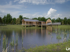 Architectural Contest for a wooden Pier