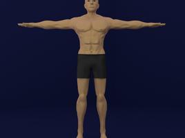 Human male Base Model