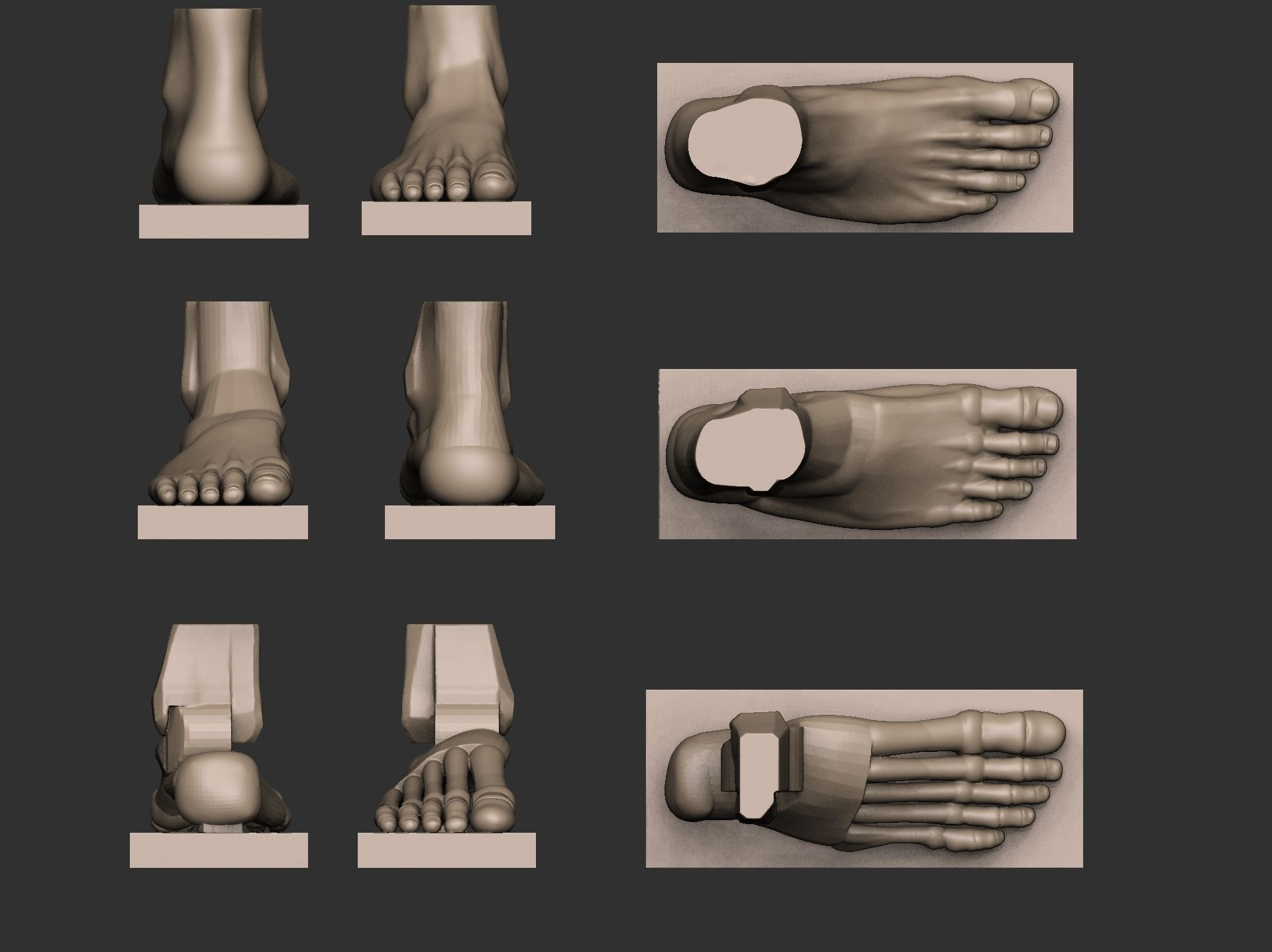 Foot Reference 3d Model 3d Printable Stl Cgtrader Com