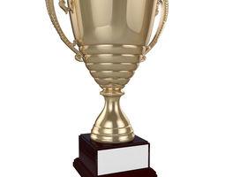 3D model Cup racing