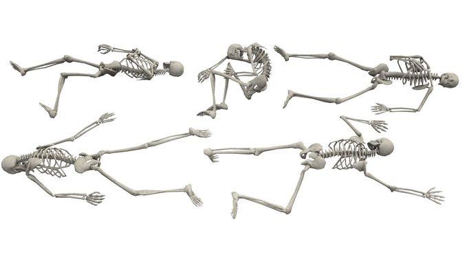 skeleton laying poses 3d model obj mtl fbx ma mb dae tga 1