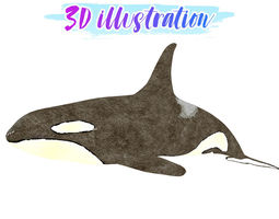 3D model Low Poly Orca Illustration Animated - Game Ready