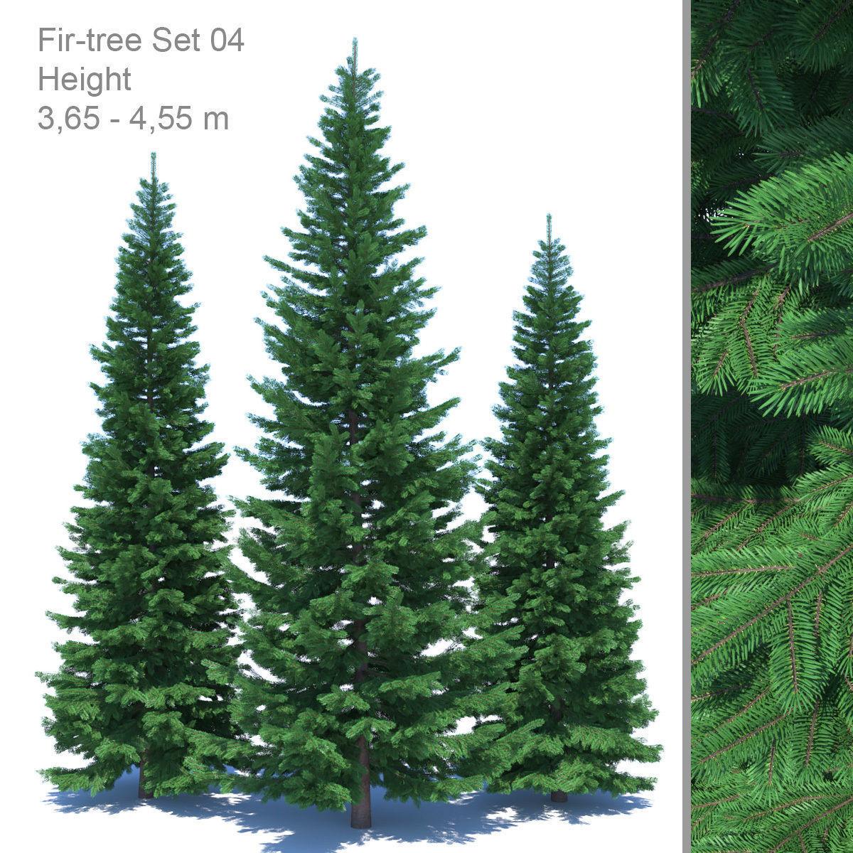 Fir-tree Set 04