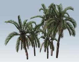 3D model realtime Palm trees