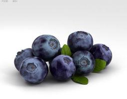 3D Bilberry