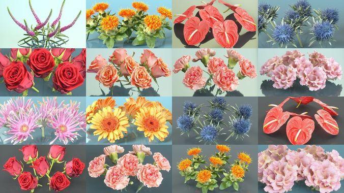 10 flowers collection 3d model obj mtl fbx ztl 1