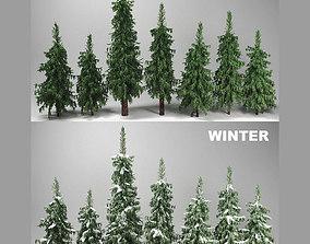 Fir Trees Set 3D model