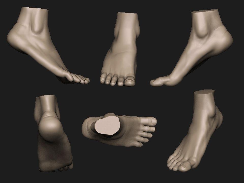 Foot Reference 2 Part 1 3d Model 3d Printable Stl