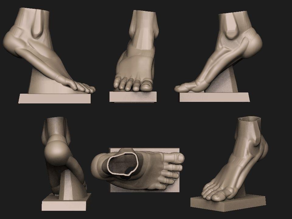 Foot Reference 2 Part2 3d Model 3d Printable Stl