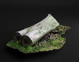 3D Highly Detailed fallen tree trunk