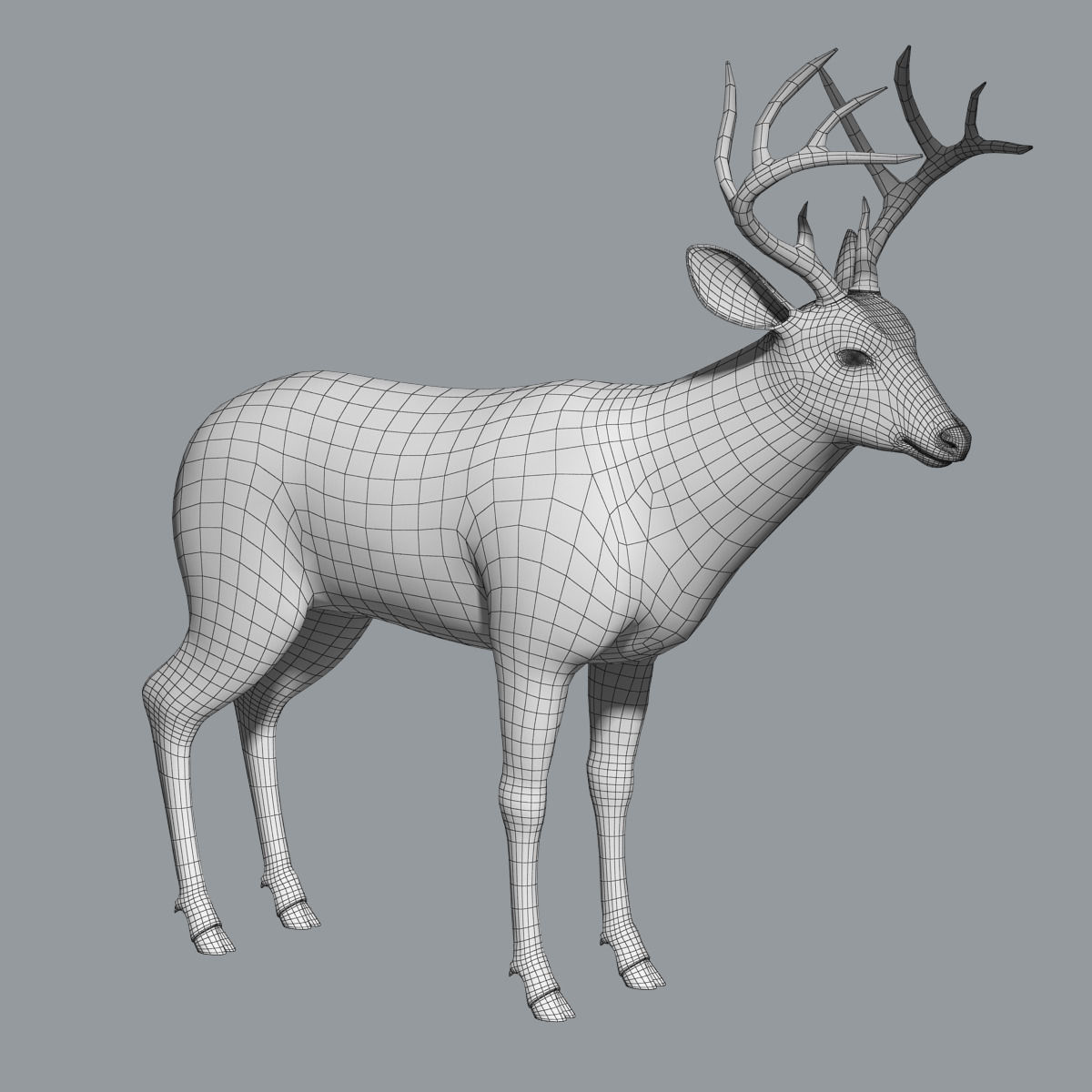 white tailed deer fur 3d model  max  obj  fbx