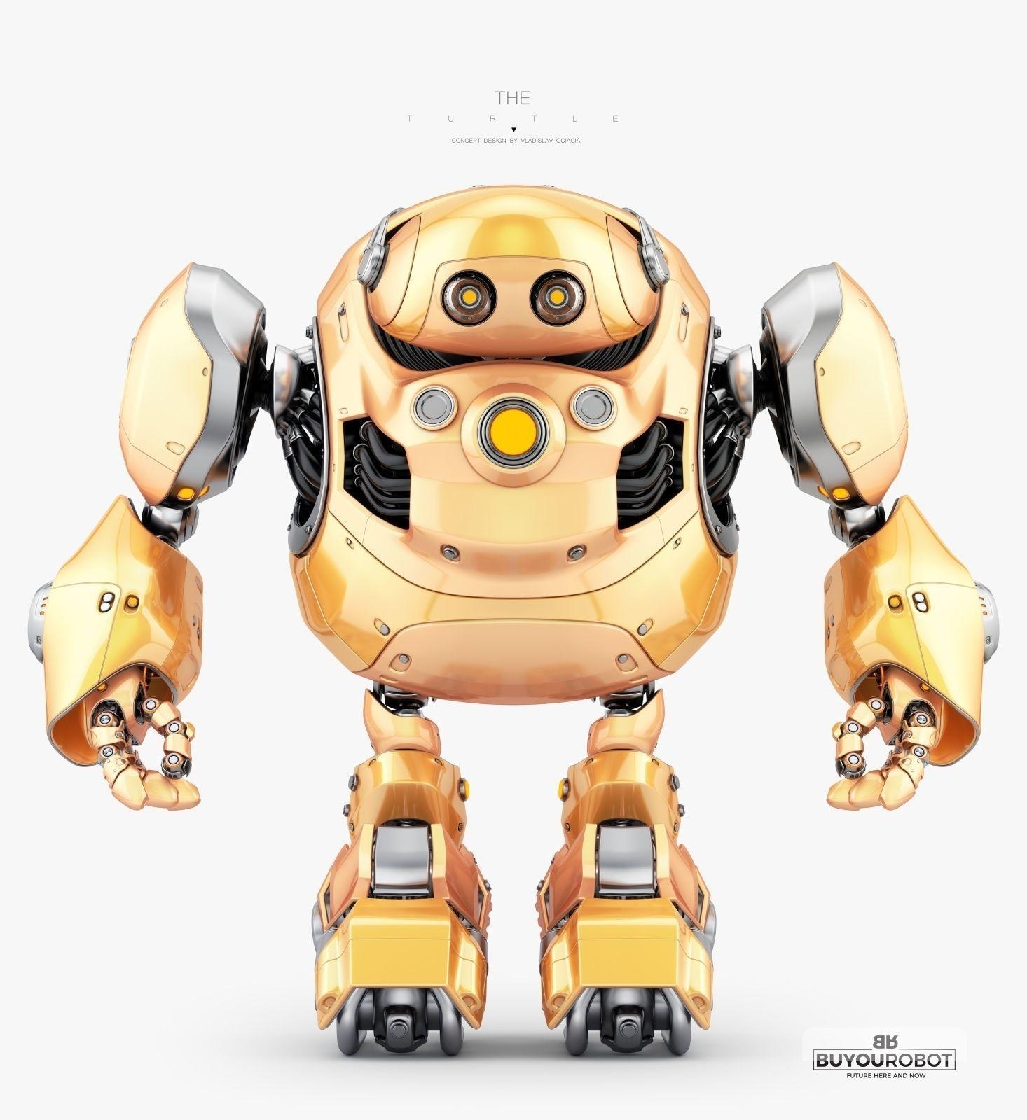 Robotic Turtle