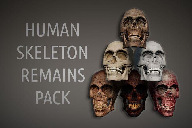 lowpoly pbr human skeleton remains pack 3d model low-poly rigged obj mtl fbx unitypackage prefab uasset 1