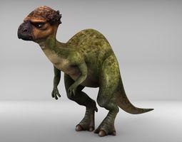 Pachycephalosaurus 3D asset