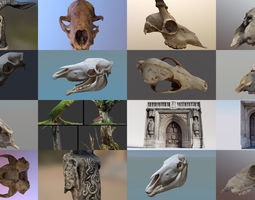 3D model The Jazzy Photogrammetry Pack