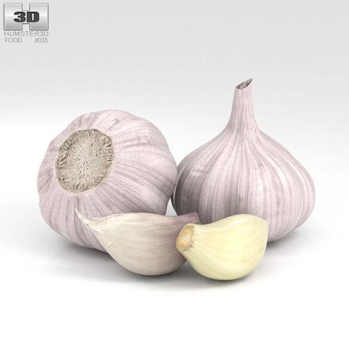 garlic 3d model max obj mtl 3ds fbx c4d lwo lw lws 1