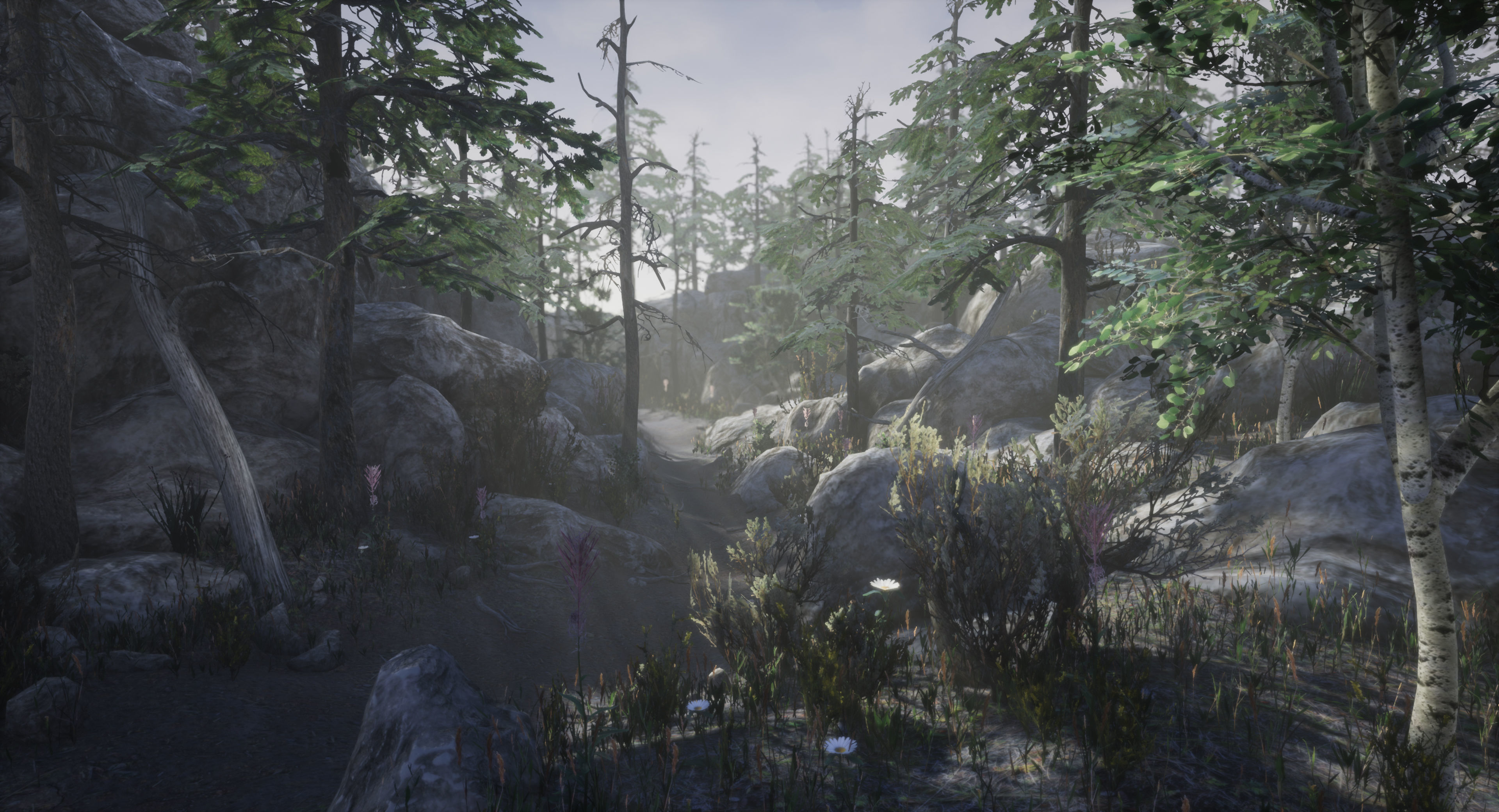 Mountain Forest Pack   3D model