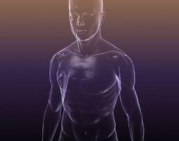 Human body - shape of a Male 3D Model