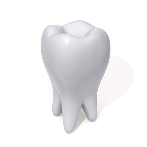 Tooth 3D model | CGTrader