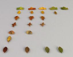 Dead Autumn Leaves 3D