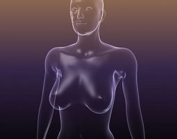 Female body - silhouette of a Woman 3D Model