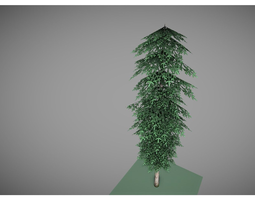 low poly pine tree 3D Model