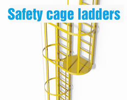 double safety cage ladder 3d