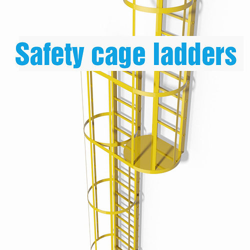 3d Double Safety Cage Ladder Cgtrader