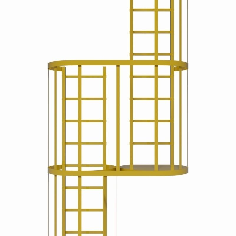 Double Safety Cage Ladder 3d Model Ipt Cgtrader Com