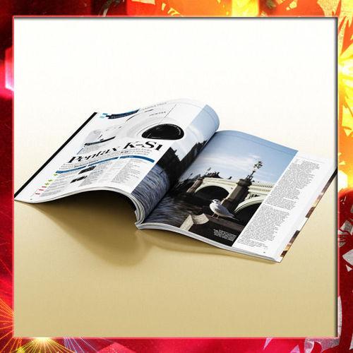 Magazine 013D model