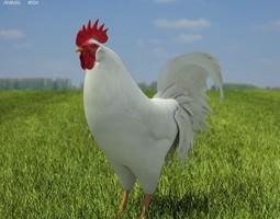 3d asset rooster leghorn leghorn VR / AR ready