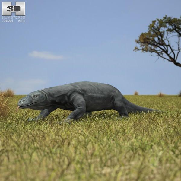 Komodo Dragon Monitor Varanus Komodoensis