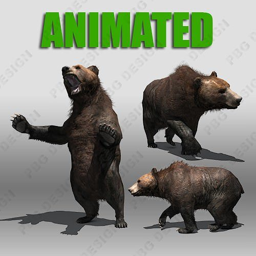 grizzly bear animated 3d model rigged animated max fbx 1