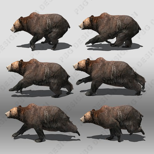 Grizzly Bear Animated 3D Model Game ready animated rigged ...