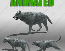 game-ready 3d asset grey wolf animated