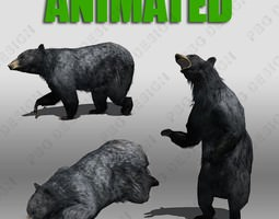 Black Bear Animated 3D Model