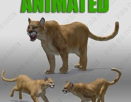 3d mountain lion animated