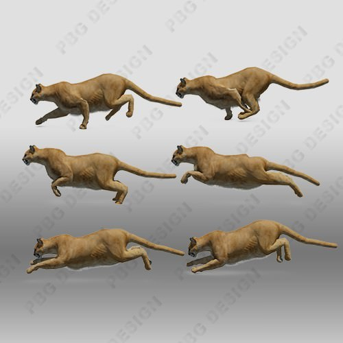 Mountain Lion Animated 3D Model animated rigged .max .fbx ...