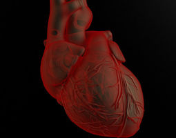 Heart and body 3D Model
