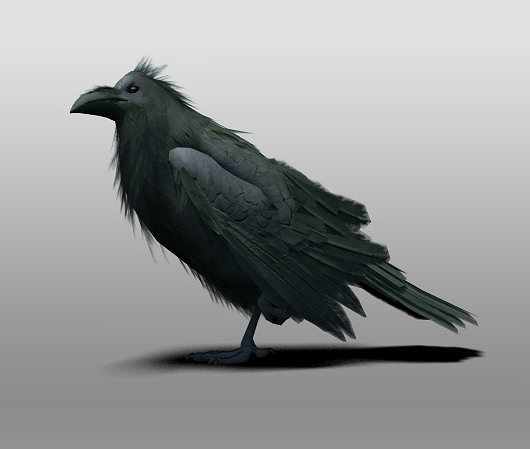 raven 3d model rigged max obj mtl 3ds fbx tga 1