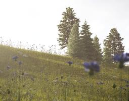 meadow 3d