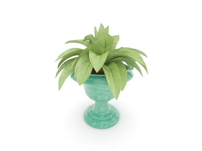 Plant and green vase3D model