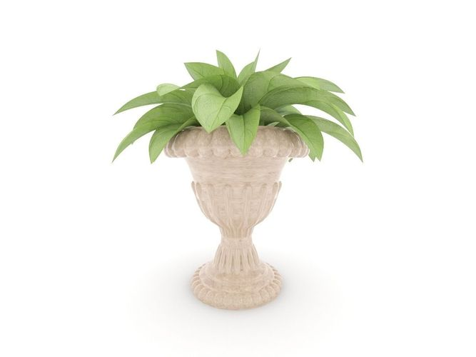 Plant and vase3D model